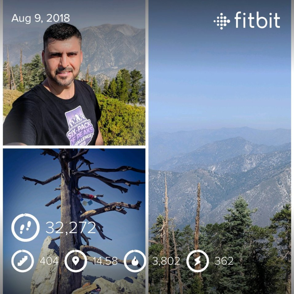 fitbitshare_548273961