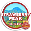2019 Strawberry Peak