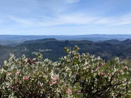Mt-St-Helena-SW