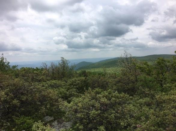 Graylock-climbing-view