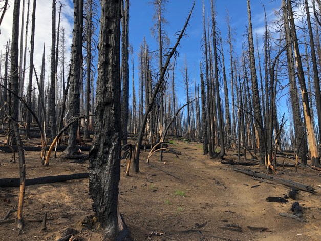 Damage-from-the-2017-Mili-Fire
