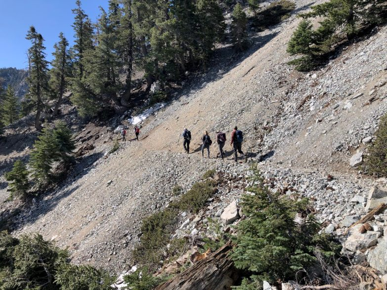 Group-walking-on-trail