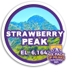 2021 Strawberry Peak