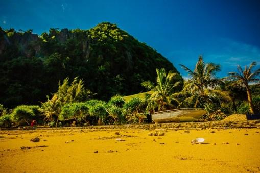 Freedom Island Beach