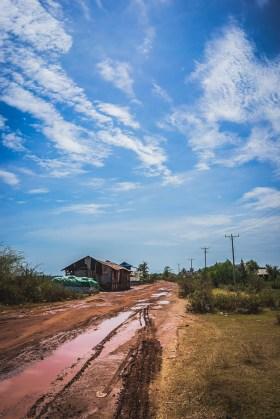 rijstvelden cambodja