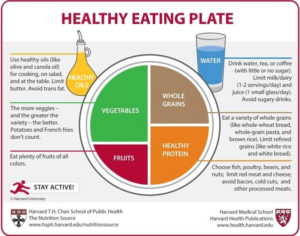 Výsledek obrázku pro health plate