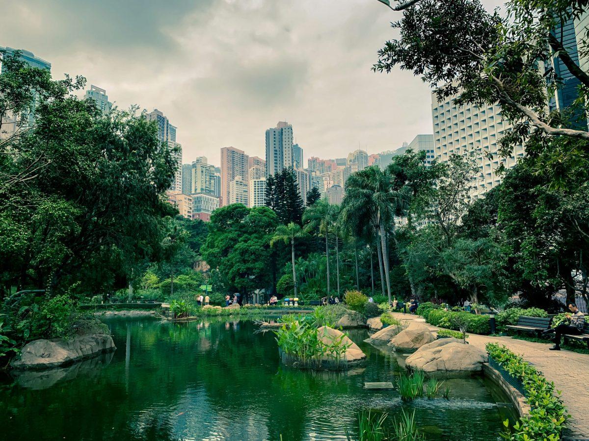 Un parco nel centro della città di Hong Kong