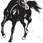 Arabian Horse Black White Royalty Free Vector Image