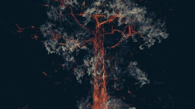 Treehugger: Wawona