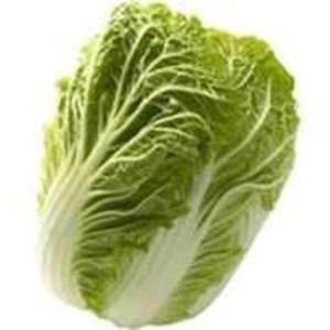 Cabbage Chinese Wombok