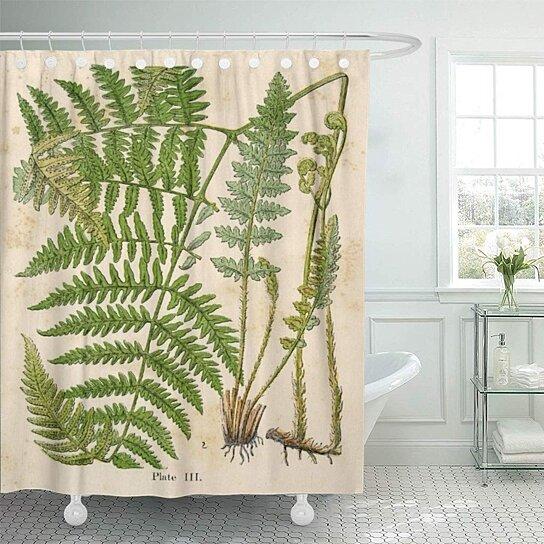 fern vintage botanical bracken plant flower fruit audubon vegetable shower curtain 60x72 inch