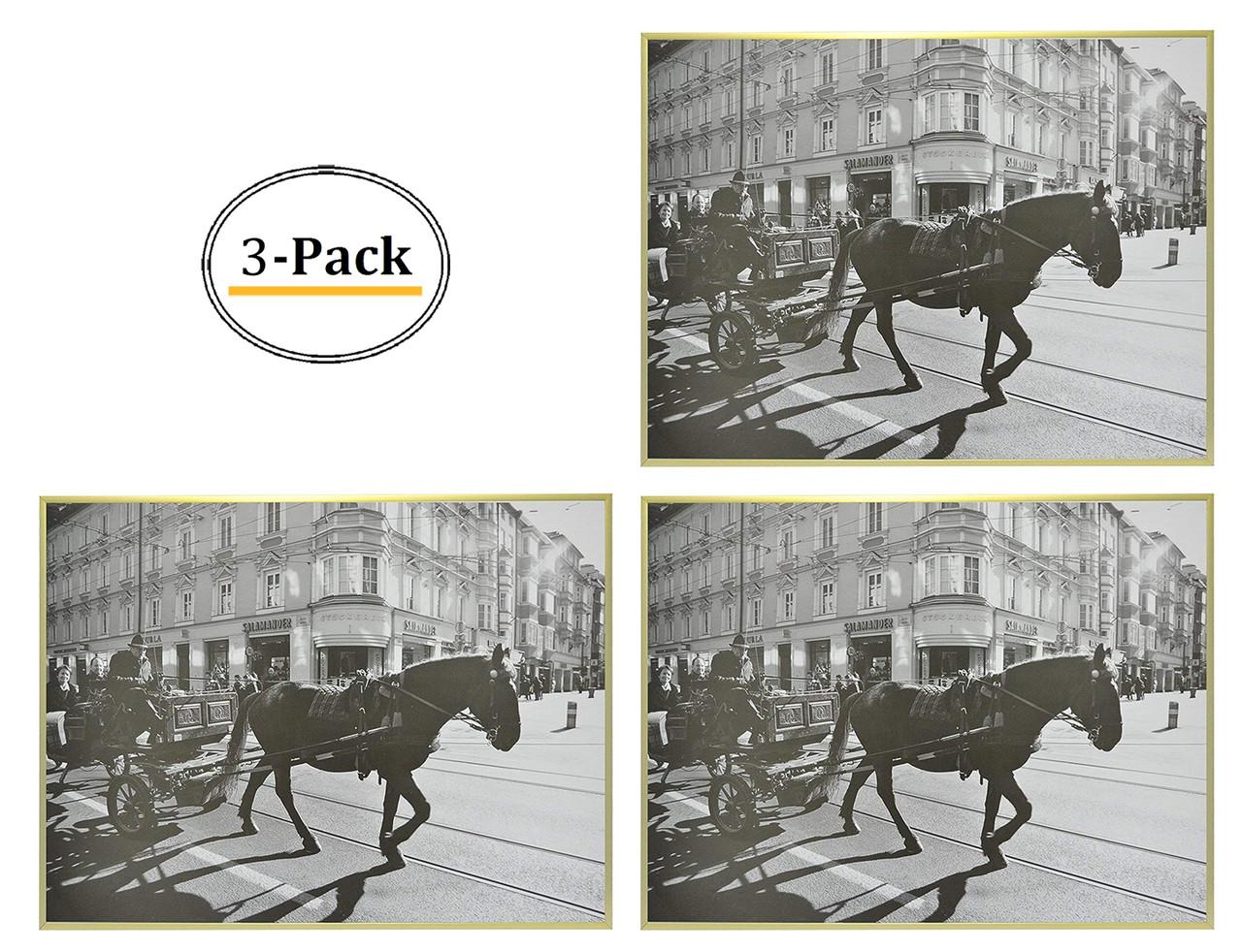 18x24 frame for 18x24 picture gold aluminum 3 pcs per box