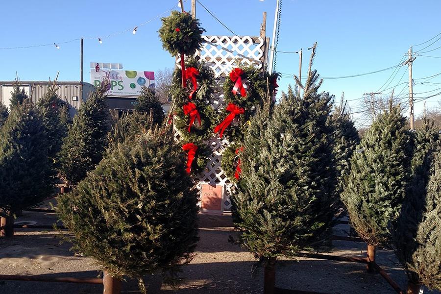 Fresh Market Pembroke Pines