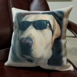 Custom Decorative Throw Pillows
