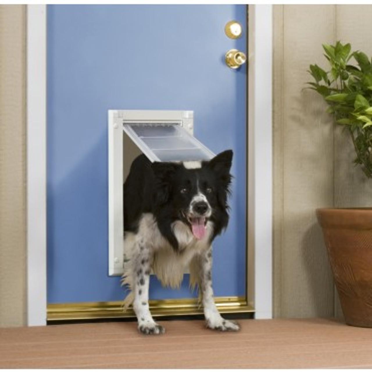 patio pacific endura flap large pet door for doors