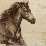Majestic Horse 1 Wrapped Canvas Giclee Print Wall Art Wall Decor Artwork
