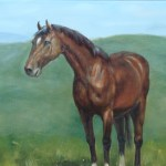 Horse Wildlife Oil Painting By S Charles 24 X 20 Dsc06338 Www Worldoilpaintings Com
