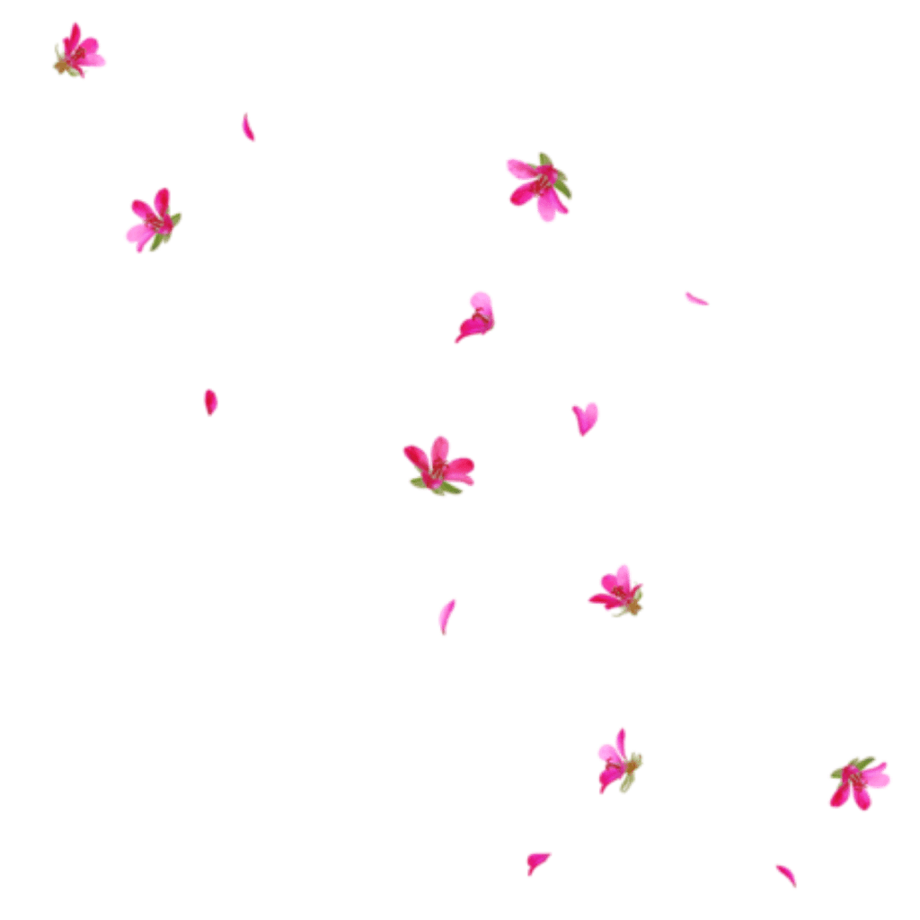 Rain Interesting Art Tumblr Pngs Png Flowers Freetoedit