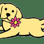 Yellow Aesthetic Dog Puppy Sticker By Allison Eileen