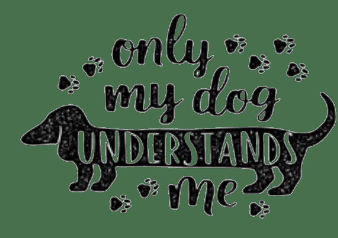 And Sayings Dog Phrases 2019