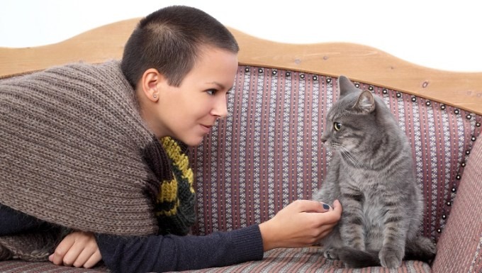 Young woman and gray domestic cat at bed-sitter.