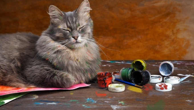 Artistic mess with the cat-artist. Cat playing with colors on the table. The paint is poured, the cat smeared in paint. Cans of paint. Portrait of multi-colored cat