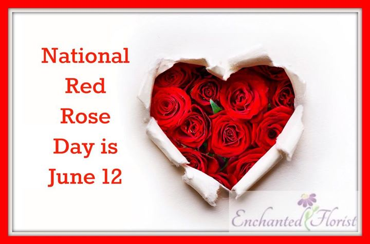 Celebrate In June National Rose Month And Red Rose Day