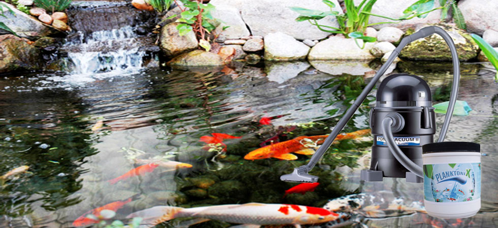 Fish Pond Chemicals