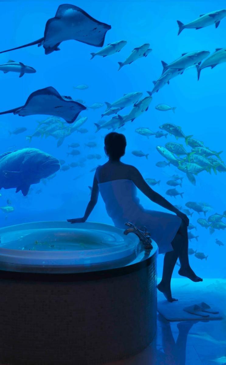bathroom-underwater