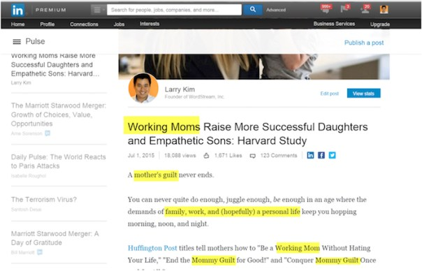LinkedIn Pulse SEO