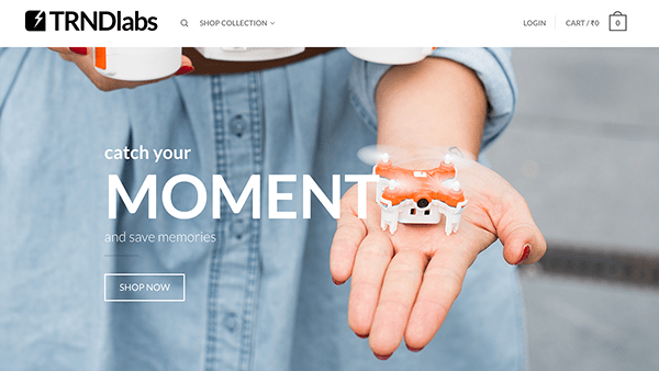 trndlabs-business-lessons-from-startups-that-pivoted-to-success