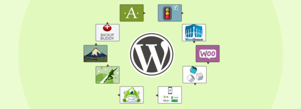 Top-10-WordPress-Plugins-for-Business-Sites-2017