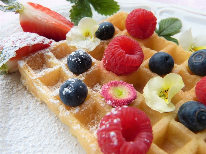waffles de avena saludables