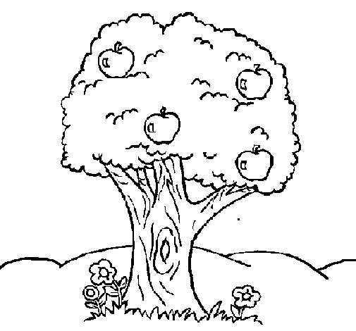 apple tree coloring page coloringcrew com