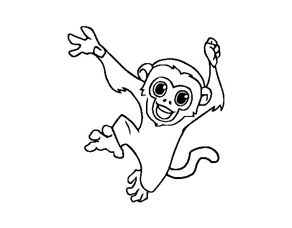 baby capuchin monkey coloring page coloringcrew com