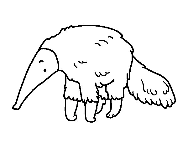 furry anteater coloring page  coloringcrew