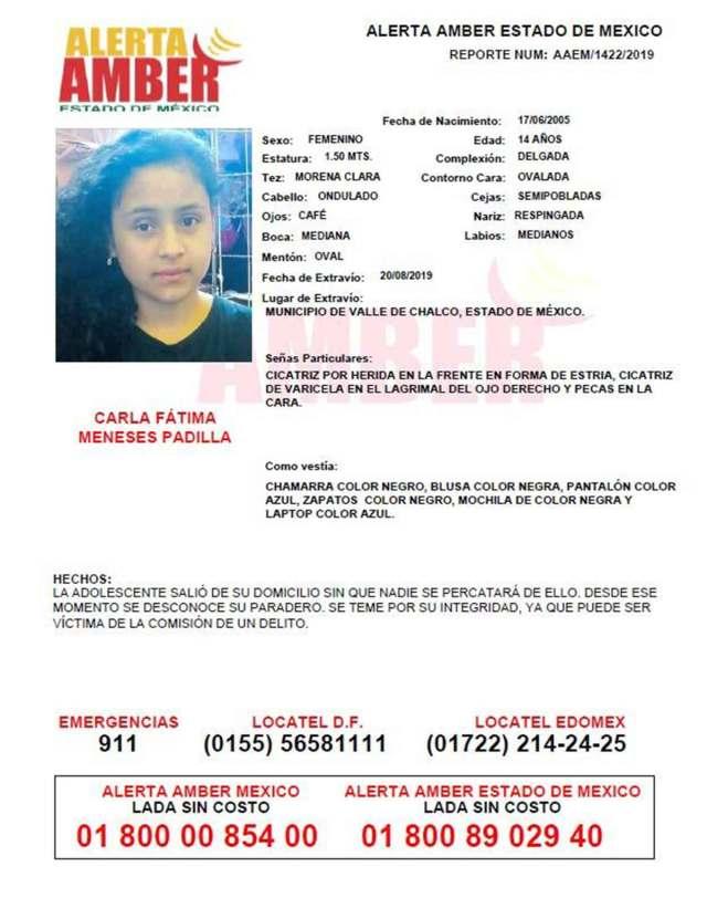 Carla Fátima Meneses Padilla, de 14 años de edad, desapareció en el municipio de Valle de Chalco. Foto: Especial