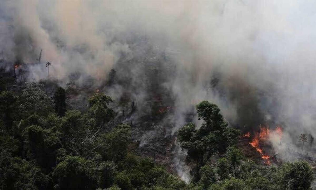 Incendio en la Amazonia.
