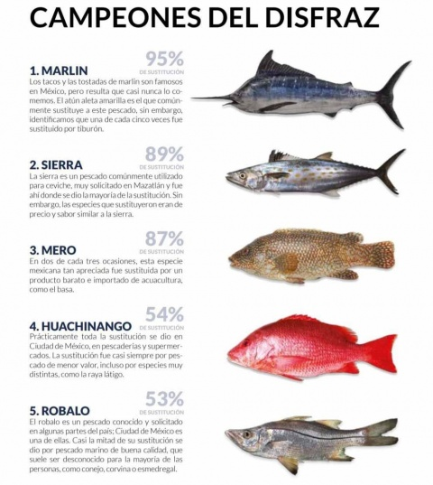 Los pescados como El Dorado, Huachinango, Mero, Róbalo, y Marlin son sustituidos muchas veces por atún aleta amarilla, basa, raya látigo, conejo, corvina, esmedregal y tiburón zorro