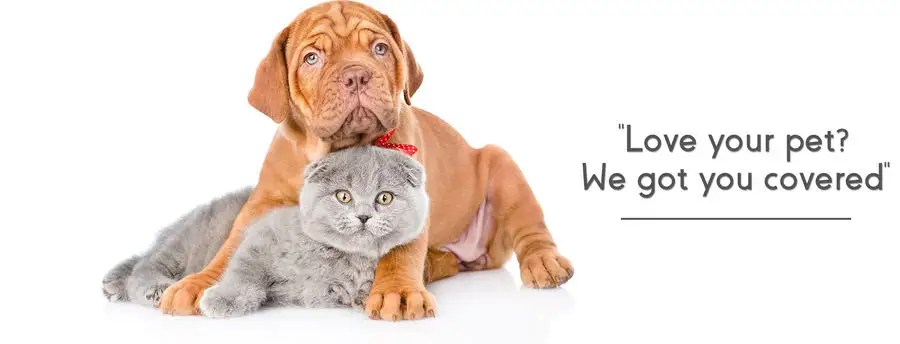 Contest Entry #7 for Shopify Banner for a pet shop