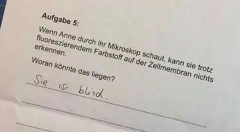 Amazon Alexa Mit Humor Sprachassistenten News