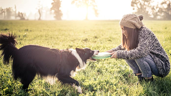 Woman playing tug-of-war with her dog using a frisbee