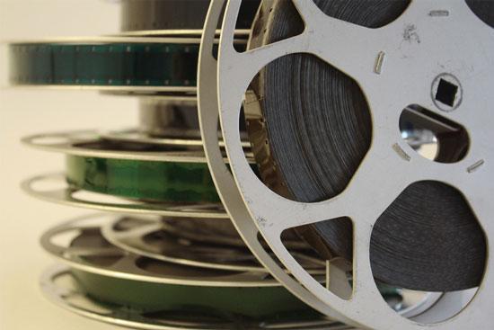 Wildlife filmmaking career opportunities