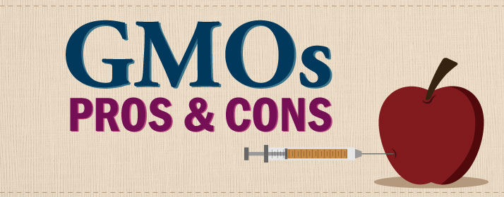 list the pros and cons of genetically modified foods co example about genetically modified food pros and cons essay