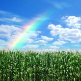 Is This the Best Time Ever for Agriculture?
