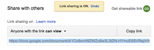 google-doc-anyone-with-link-can-view.png