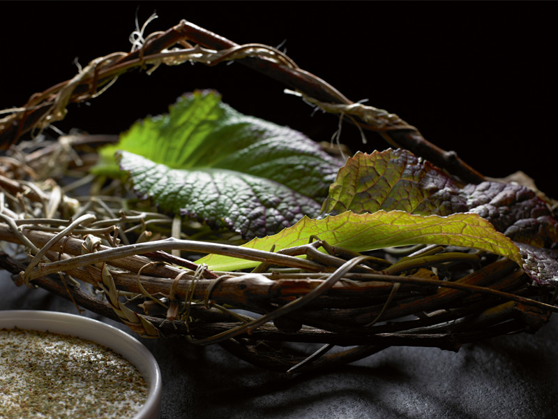 Mustard leaves - Having grown up on wild, foraged ingredients, Shewry believes in retaining the purity of the ingredients he uses