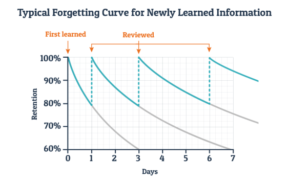 What is the Ebbinghaus forgetting curve?