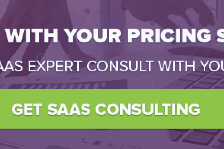 The Top 10 SaaS Pricing Strategies SaaS Pricing Strategy Consulting