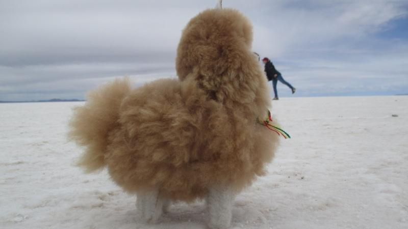 Petite peluche mascotte dans le desert d'Uyuni